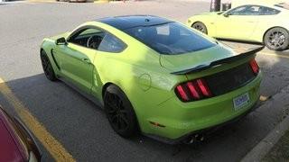 Grabber Lime 2020 GT350
