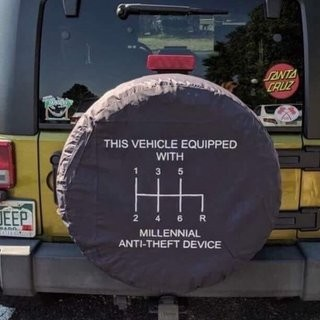 Millennial Anti-Theft device