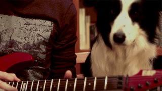 "Jonas Tamas: ""Emotional Melodic Solo"""