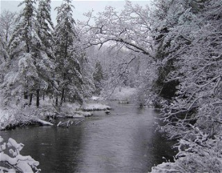 Sonja Potts Big Manistee River