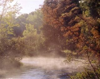 Sonja Potts Pine River