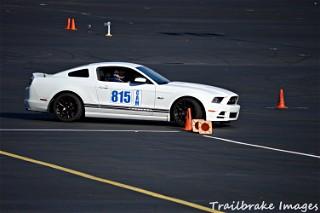 Mustang1
